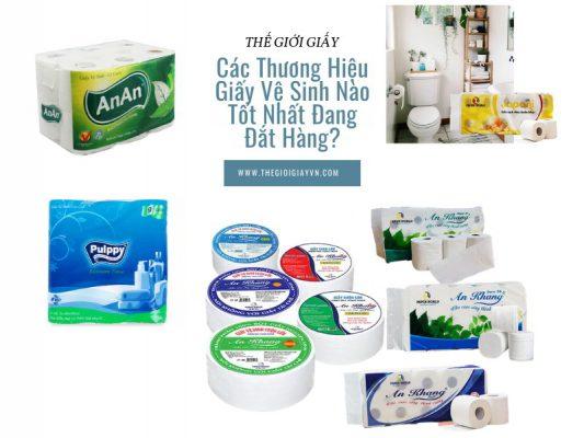 các thương hiệu giấy vệ sinh hiện nay